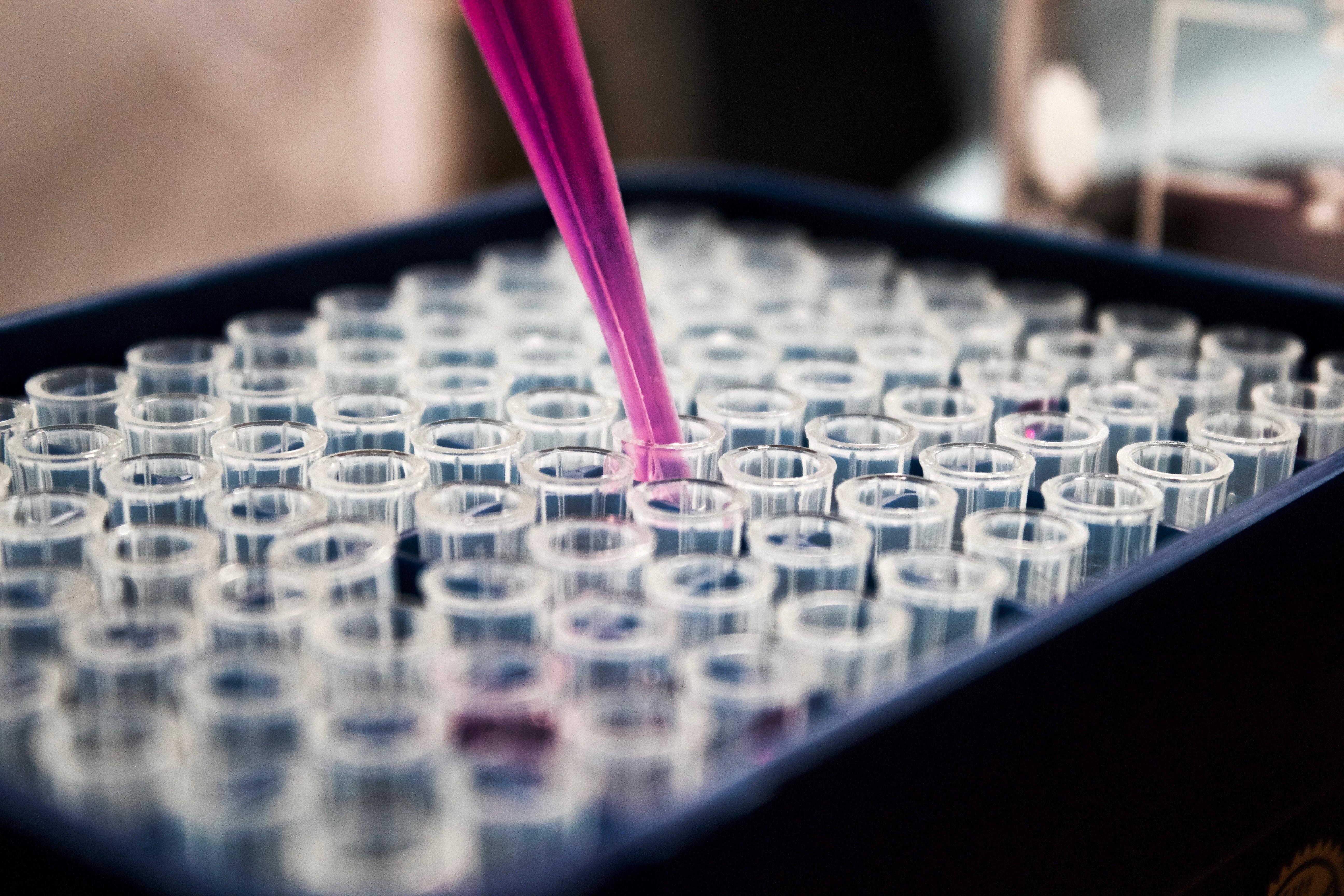 В Украине уже зафиксировали два вида опасных вирусов гриппа