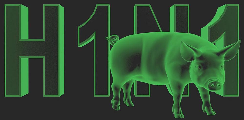 Україною продовжує ширитися свинячий грип