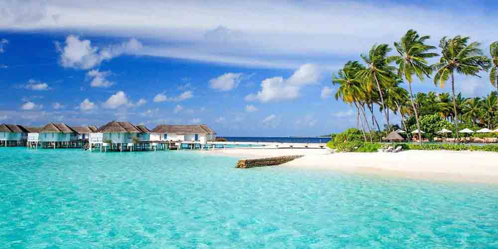 H1N1: свиной грипп-убийца атакует Карибы