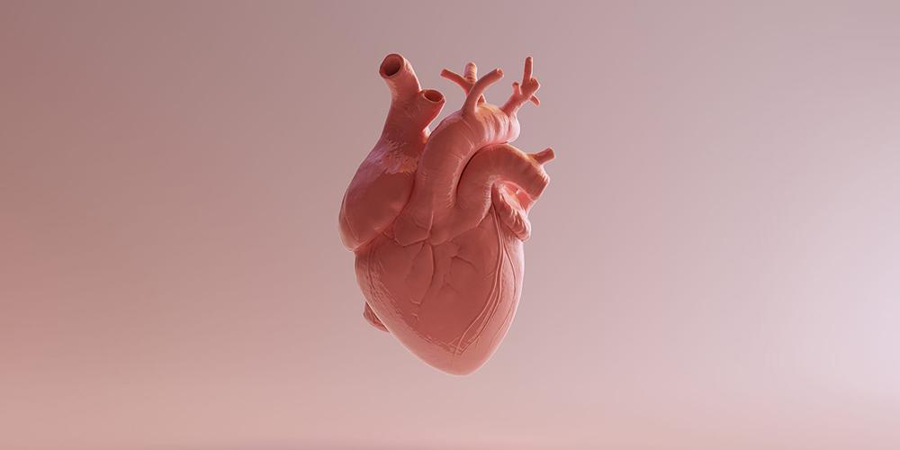 В Японии провели операцию, которая позволит сократить число полных пересадок сердца