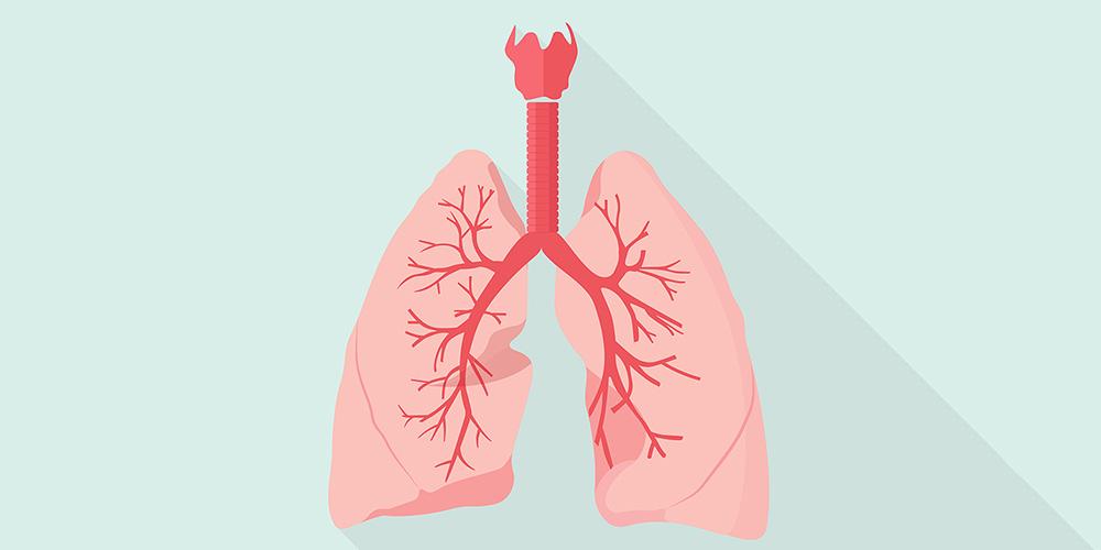 Чим небезпечний вірусний бронхіт під час застуди, що треба знати