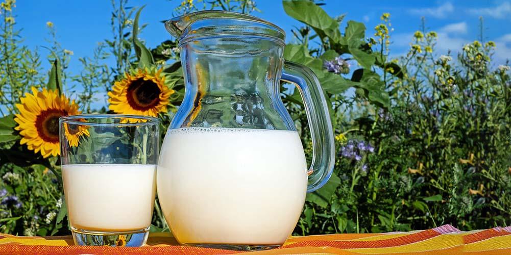 Употребление жирного молока не вызывает ожирения у детей