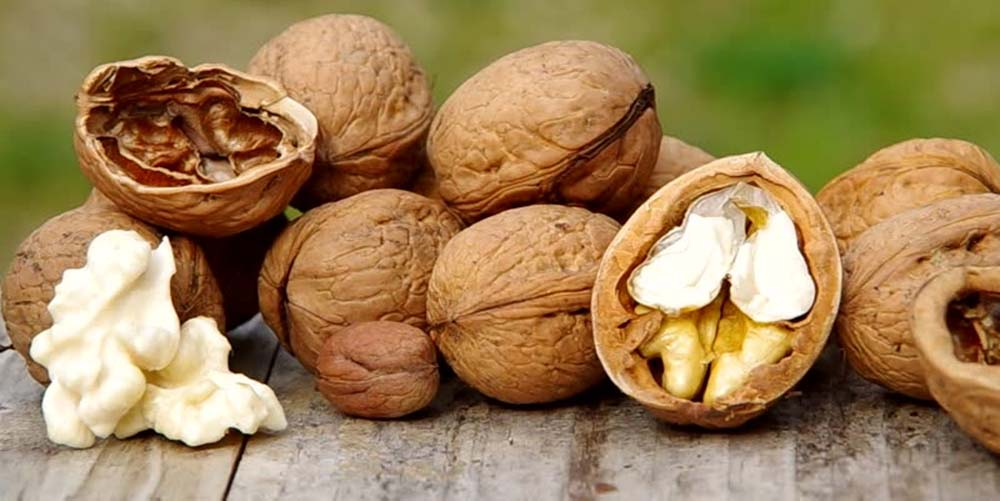 Как грецкие орехи влияют на сердце и кишечник