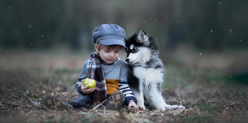 Наличие собаки в детстве снижает риск развития шизофрении