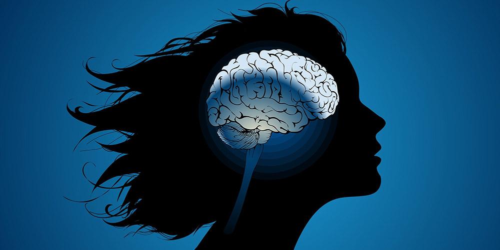 Ученые продолжат изучать влияние таблеток на структуру и функции женского мозга
