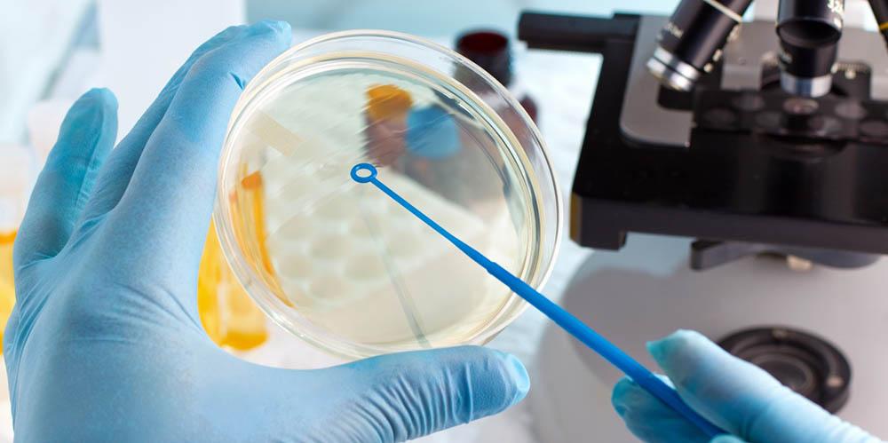 Вчені вивчають ефективність противірусних препаратів на новому штамі грипу В, який створили самі