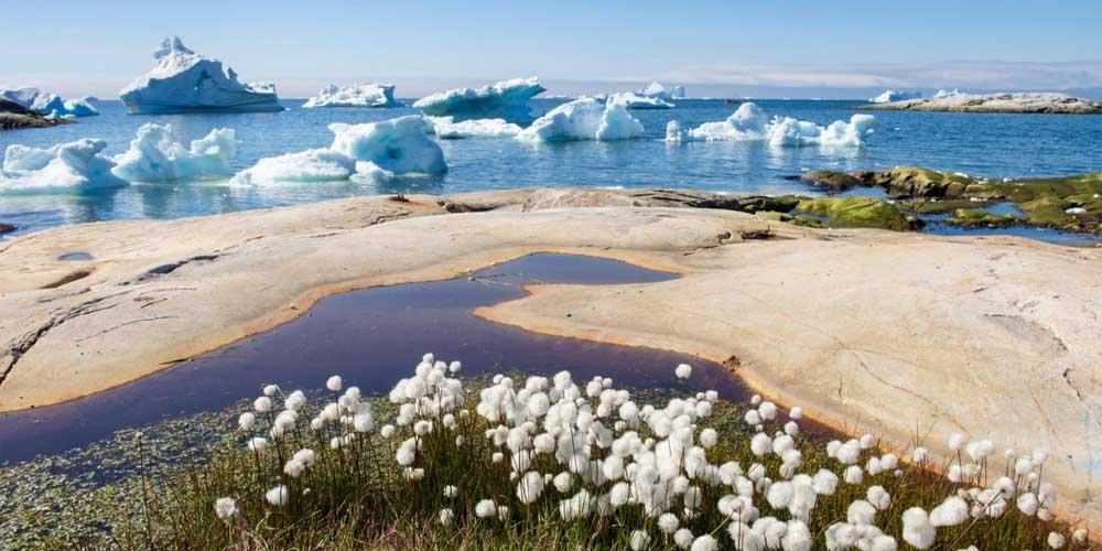 До конца столетия около 1,2 миллиарда людей пострадает от потепления