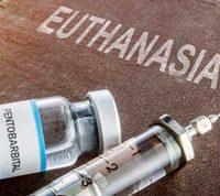 В Нидерландах суд разрешил эвтаназию в случае прогрессирующей деменции
