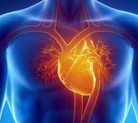 Как COVID-19 дает осложнения на сердечнососудистую систему