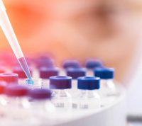 Тестирование на жиры поможет скорректировать рацион беременных, сделав его более полезным