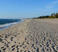 Ученые оценили реальность заражения коронавирусом на пляже