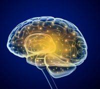 Ученые выяснили новые особенности течения болезни Альцгеймера