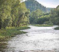 Ученые выяснили на протяжении какого времени коронавирус выживает в реках и озерах