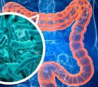 Микрофлора кишечника расскажет о наличии паразитов
