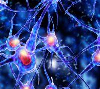 Новый аппарат поможет точнее диагностировать заболевания мозга, в том числе эпилепсию