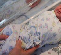 Ученые ждут снижения рождаемости после пандемии COVID-19