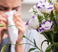Как изменения климата приводят к всплеску аллергий и аутоиммунных заболеваний
