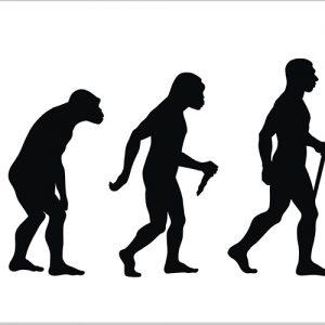 Эволюция сделала человечество восприимчивым к болезням