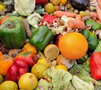 Швейцария хочет сократить количество пищевых отходов на 50%