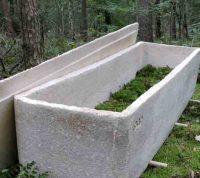 Людей предлагают хоронить в «живых» гробах из грибов