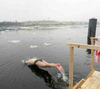 Плавание в холодной воде может защитить мозг от дегенеративных заболеваний