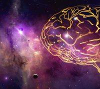 Сети космических галактик и нейронных клеток в человеческом мозге имеют много общих черт