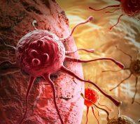 Вакцину против рака скоро будут тестировать на людях