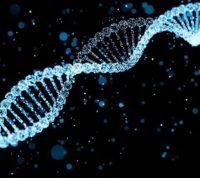 Изобретено первое лекарство от заболевания, вызывающего преждевременное старение