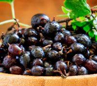 Черная смородина положительно влияет на баланс глюкозы в крови