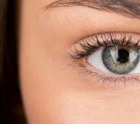 Ученые научились реанимировать глаза и проводить на них испытания