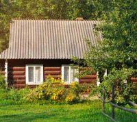 Жизнь рядом с деревьями предотвращает повреждение сосудов
