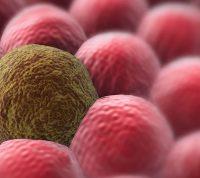 Ученые тестируют перспективную вакцину от рака кожи