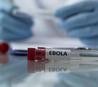 В Африку вернулся вирус Эбола