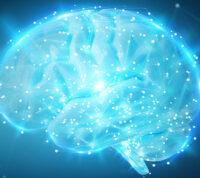 Сексуальные намеки влияют на активность мозга – исследование