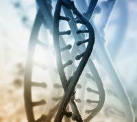 Ученые обнаружили ген, который может быть связан с предрасположенностью к инсультам