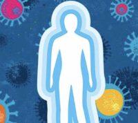 Захистити та нейтралізувати або, як імунітет бореться з вірусами ГРВІ