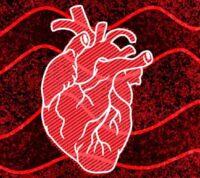 Из-за слабого сердца страдает мозг