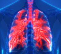 Гиперреактивность бронхов: как вирусы ОРВИ способствуют ее развитию