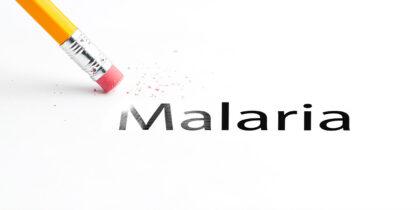 ВОЗ планирует победить малярию к 2025 году