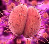 FDA одобрило быстрый тест на хламидиоз и гонорею