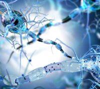 COVID-19 вызывает психические и неврологические заболевания у каждого третьего переболевшего