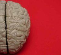 COVID-19 меняет объем серого вещества в мозге - исследование