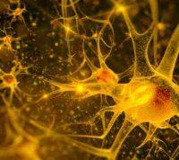 Новое устройство удалённо отслеживает активность мозга