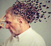 Образ жизни влияет на темп старения мозга