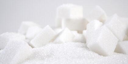 Бактерии и вирусы инфицируют клетки через сахара, - ученые