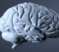 Ученые выяснили, как ВИЧ-инфекция влияет на белое вещество мозга