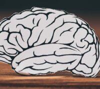 Онлайн-калькулятор подсчитает риск развития деменции