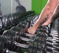 Ученые выяснили, в какое время дня лучше всего тренировать мышцы