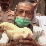 В Индонезии сделавшим прививку от COVID-19 дарят курицу