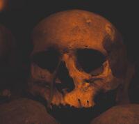 Чума может быть на 2000 лет старше, чем считалось ранее